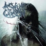 Asylum Queen - Hopeless