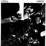Capsule + Furnace - Split
