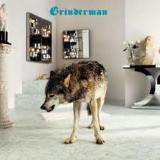 chronique Grinderman - Grinderman 2