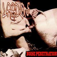 L.a.r.d.o.n. - Noise Penetration