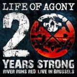 Life of Agony - 20 years strong : Live in Brussels (chronique)
