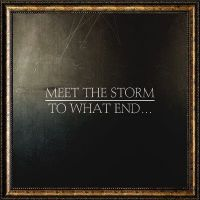 Meet The Storm - To what end
