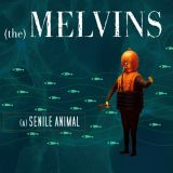chronique Melvins - (A) senile animal