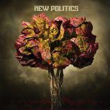 New Politics - New Politics