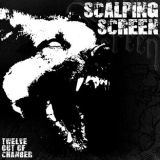 Scalping Screen - Twelve out of chamber