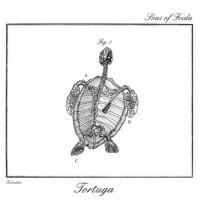 Sons of frida - Tortuga (chronique)