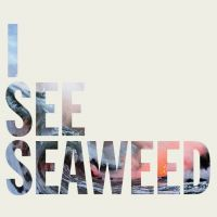 The Drones - I See Seaweed