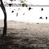 The Tallest Man On Earth - There's no leaving now