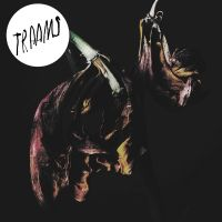 chronique Traams - Grin
