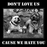 Unfit - Dont Love Us Cause We Hate You