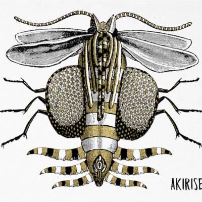 Akirise - Akirise (chronique)