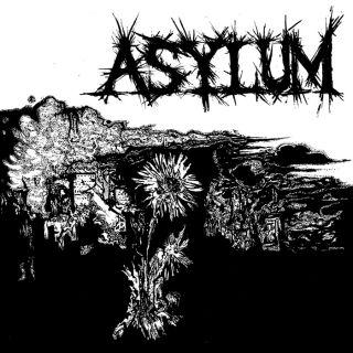Asylum (us) - S/t