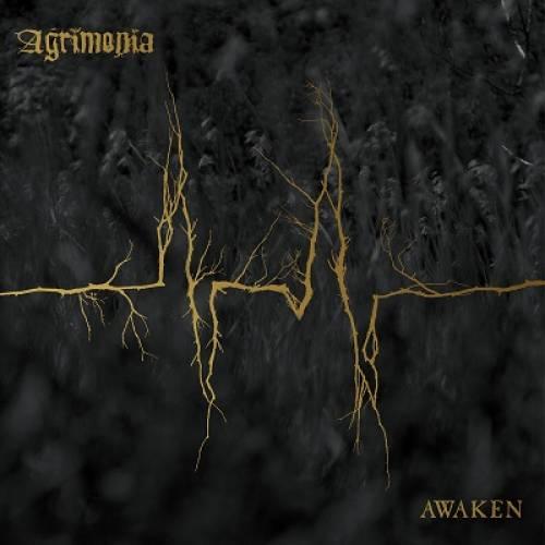 chronique Agrimonia - Awaken