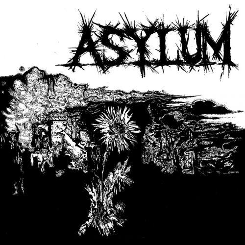 chronique Asylum (us) - S/t
