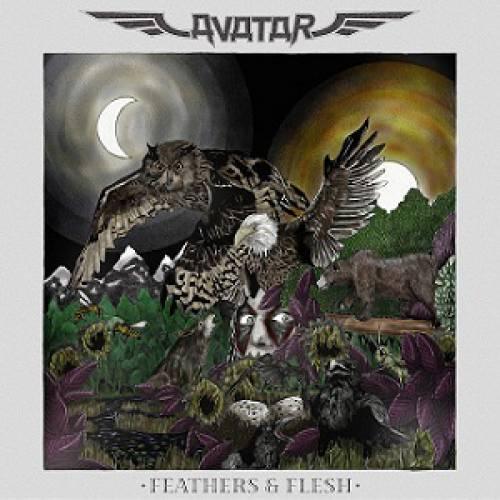 chronique Avatar - Feathers & Flesh