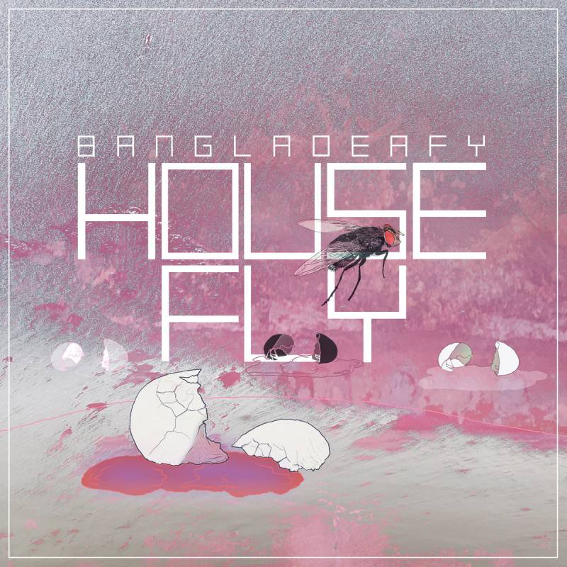 chronique Bangladeafy - Housefly