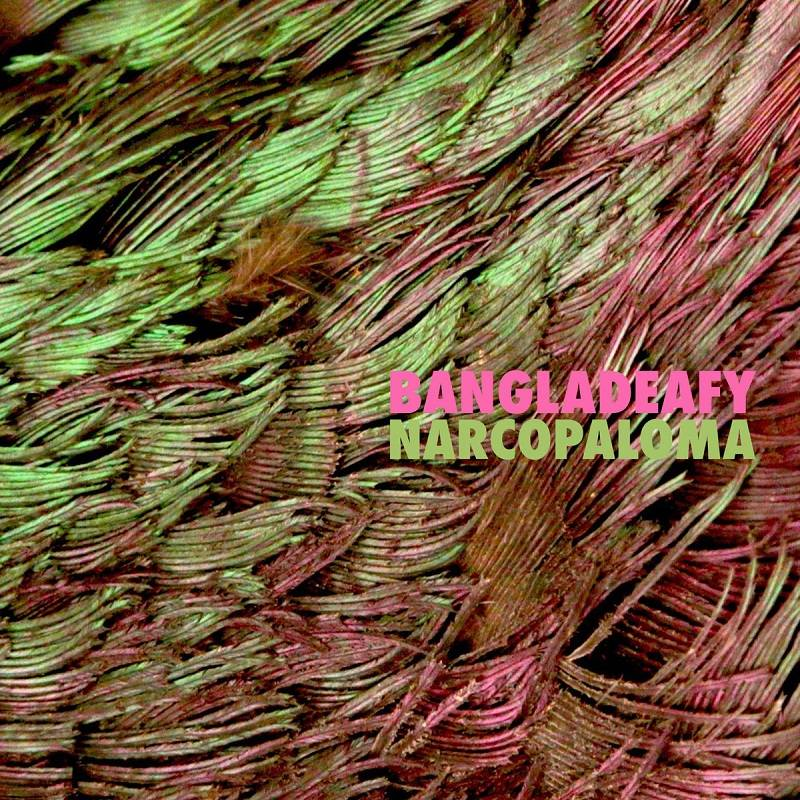 chronique Bangladeafy - Narcopaloma