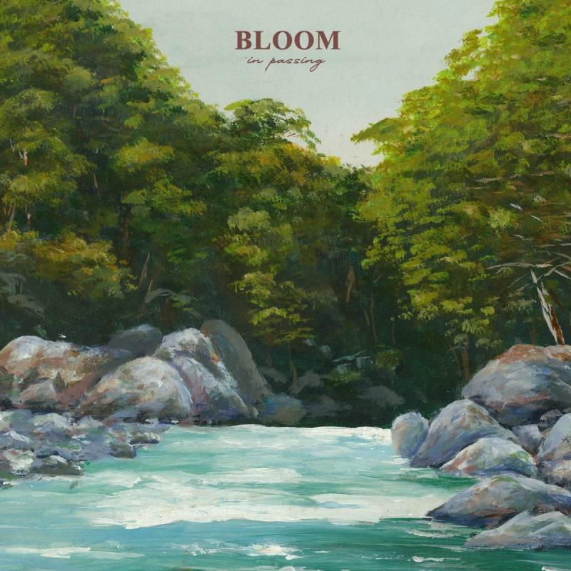 chronique Bloom - In Passing