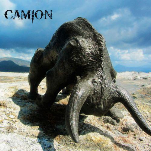 chronique Camion - Bulls