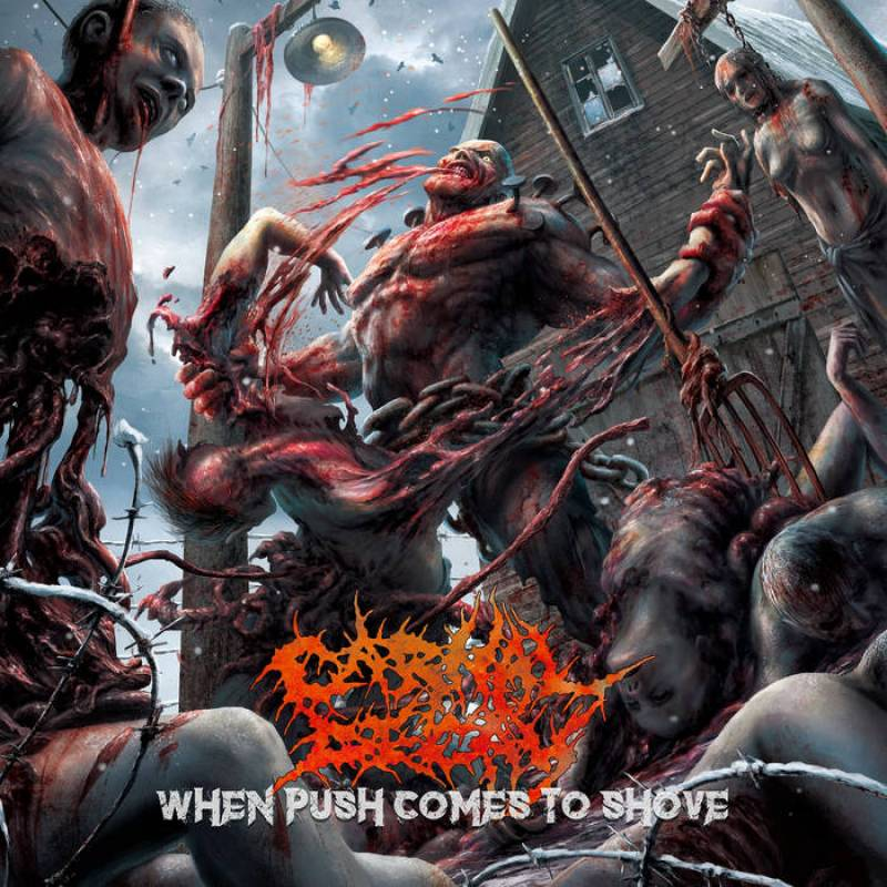Carnal Decay - When push comes to shove (chronique)