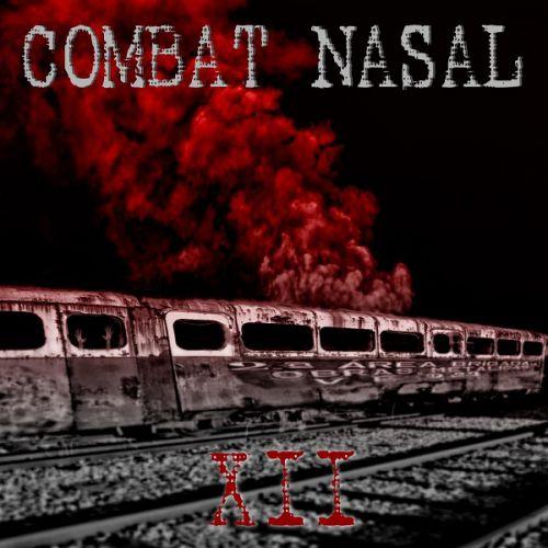 chronique Compilation - Combat Nasal vol.12