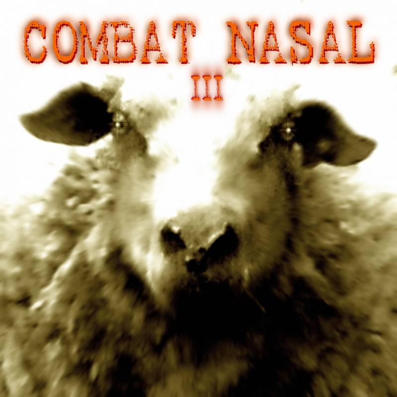 chronique Compilation - Combat Nasal vol.3
