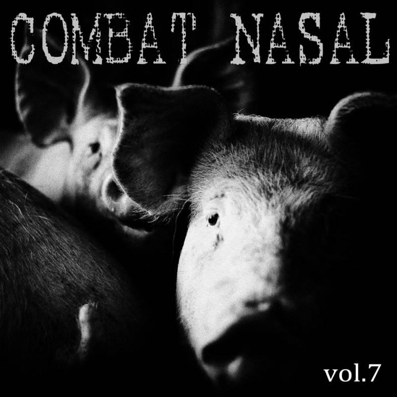 chronique Compilation - Combat Nasal vol.7