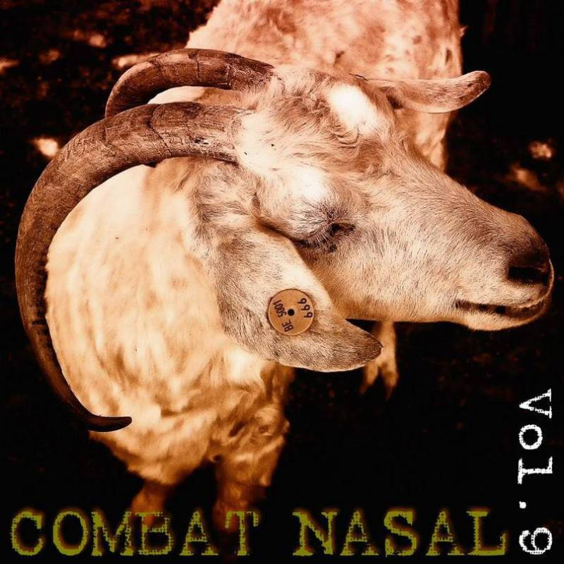 chronique Compilation - Combat Nasal vol.9