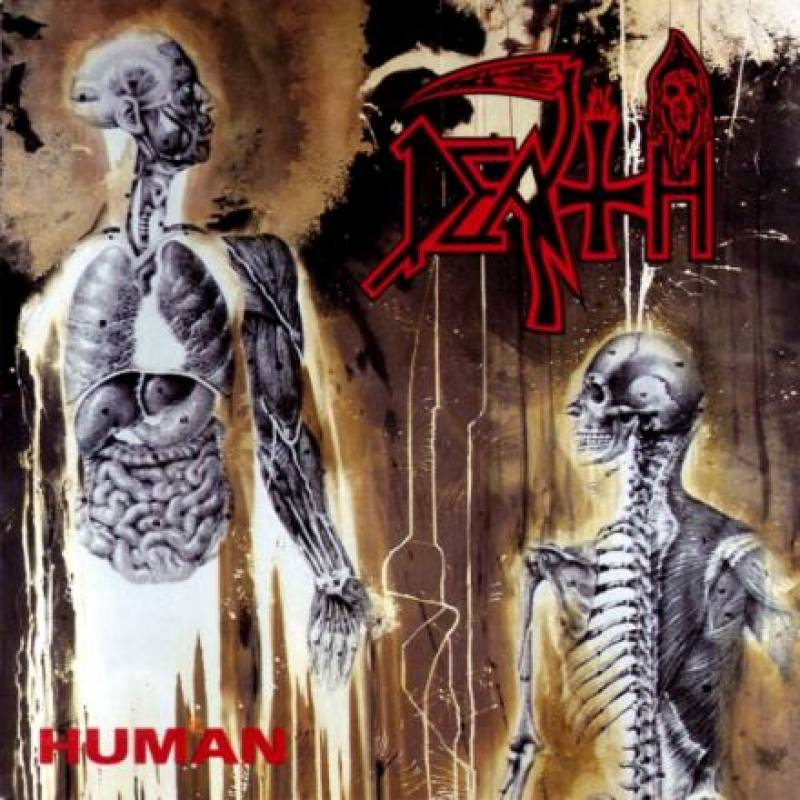 [Metal] Playlist - Page 3 Death-human-2355