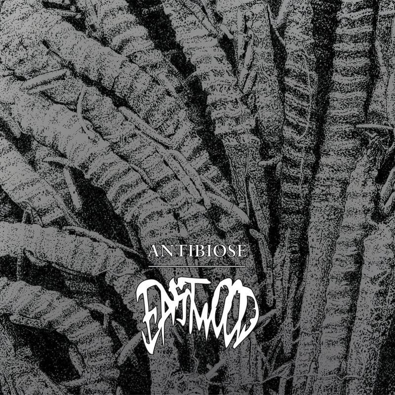 chronique Eastwood - Antibiose
