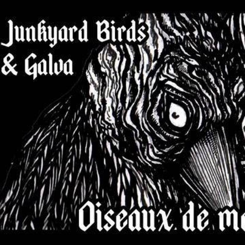 chronique Junkyards Birds + Galva - Oiseaux de Mauvaise Augure