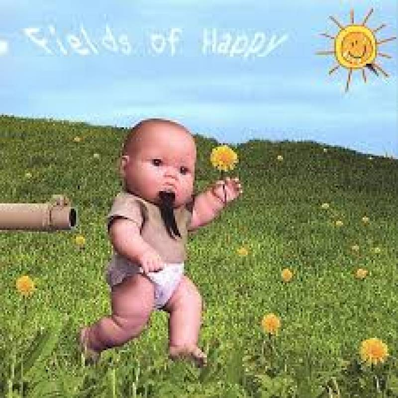 chronique Gargamel! - Fields Of Happy