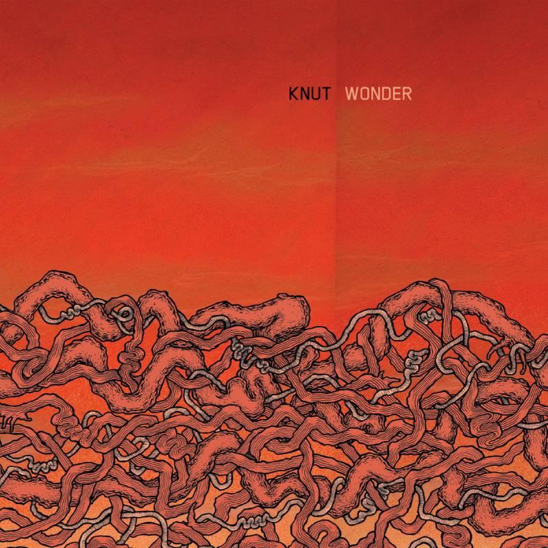 chronique Knut - Wonder