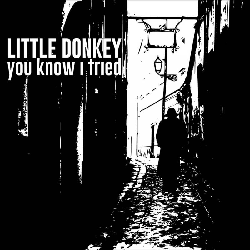 chronique Little Donkey - You Know I Tried