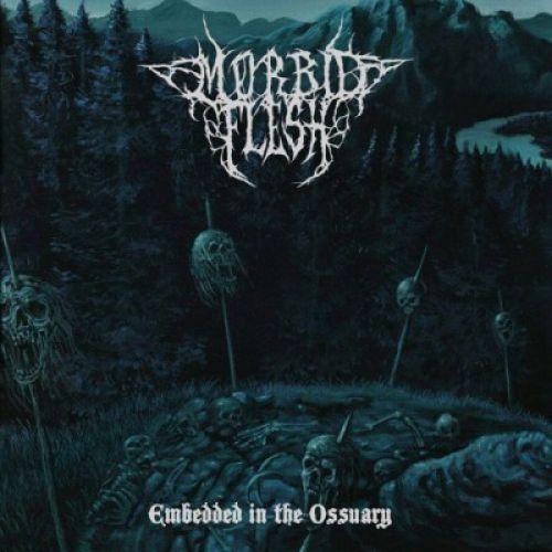 chronique Morbid Flesh - Embedded in the Ossuary