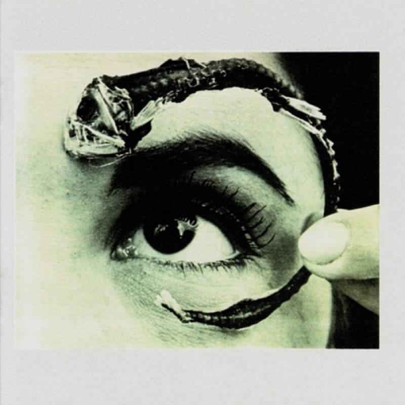 chronique Mr. Bungle - Disco Volante