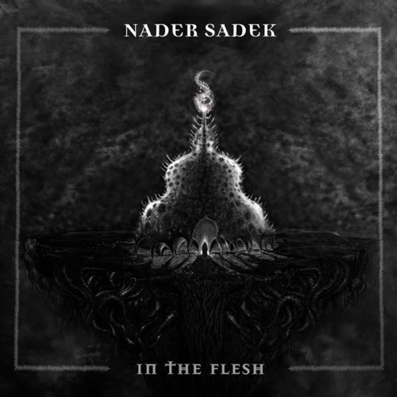 chronique Nader Sadek - In The Flesh