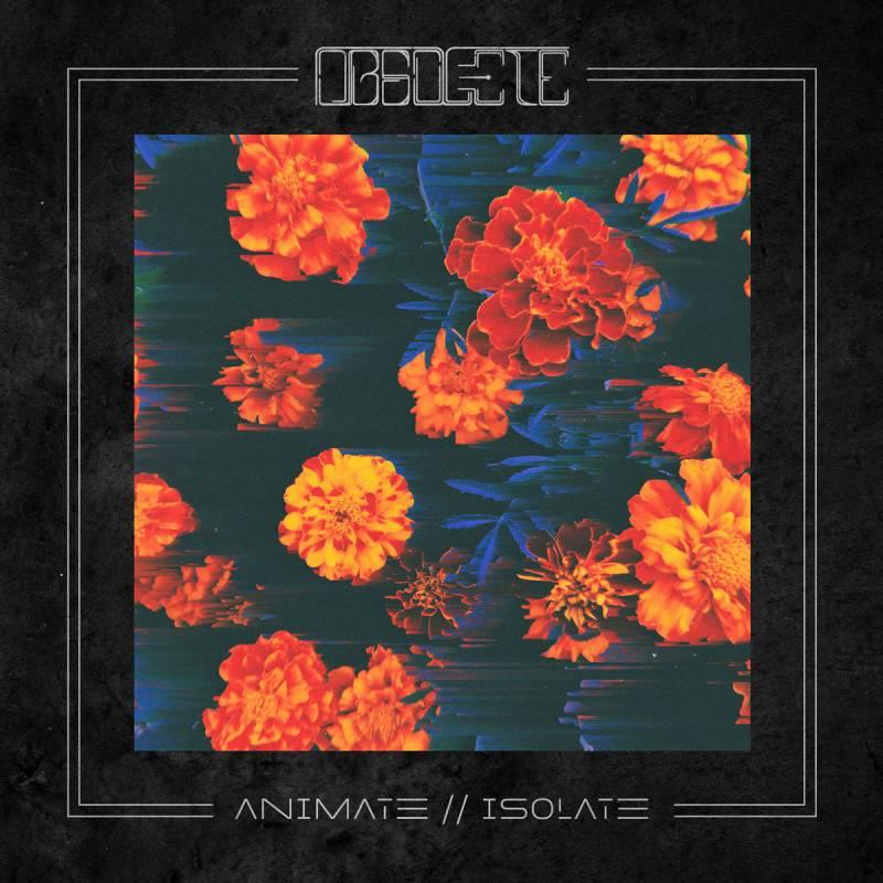 chronique Obsolete - Animate//Isolate