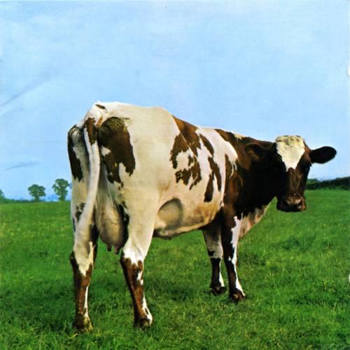 chronique Pink Floyd - Atom Heart Mother