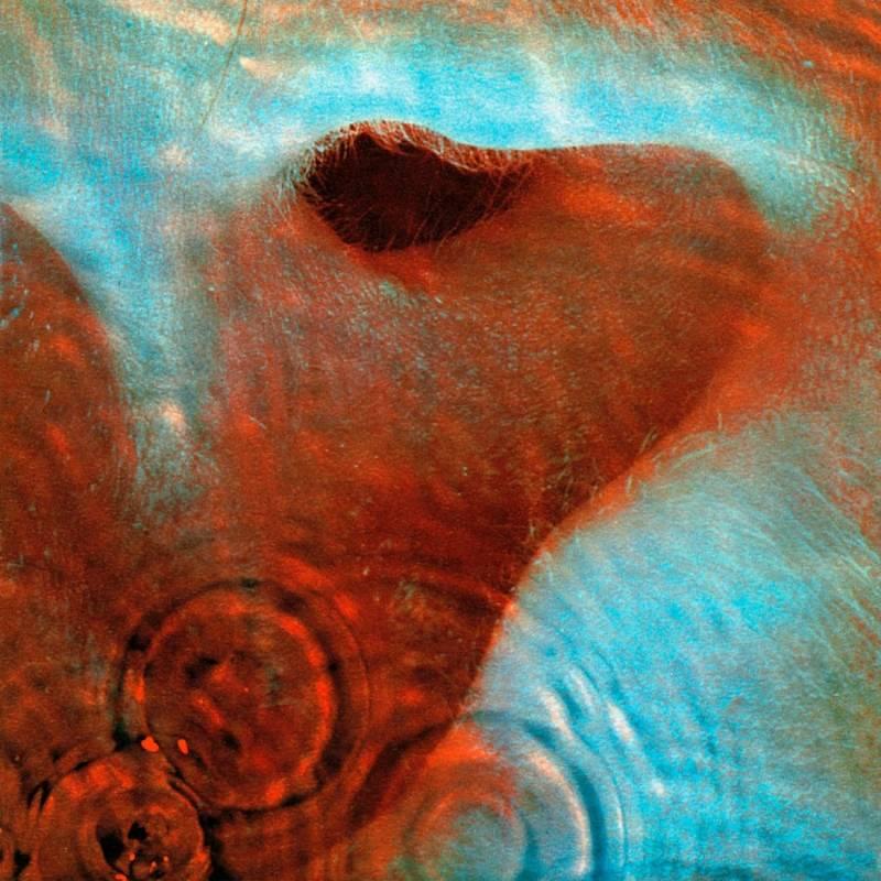 chronique Pink Floyd - Meddle