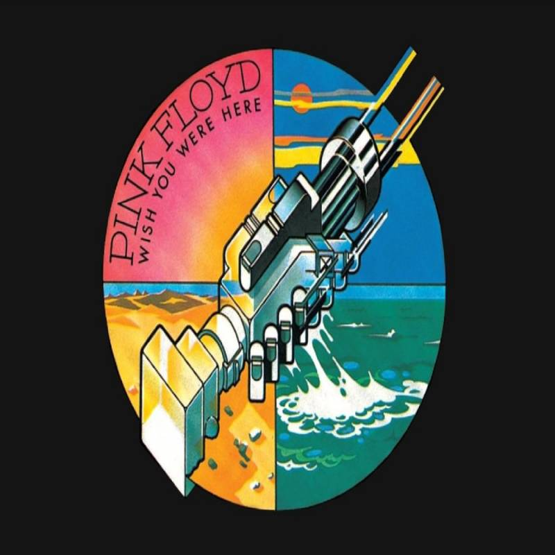chronique Pink Floyd - Wish You Were Here