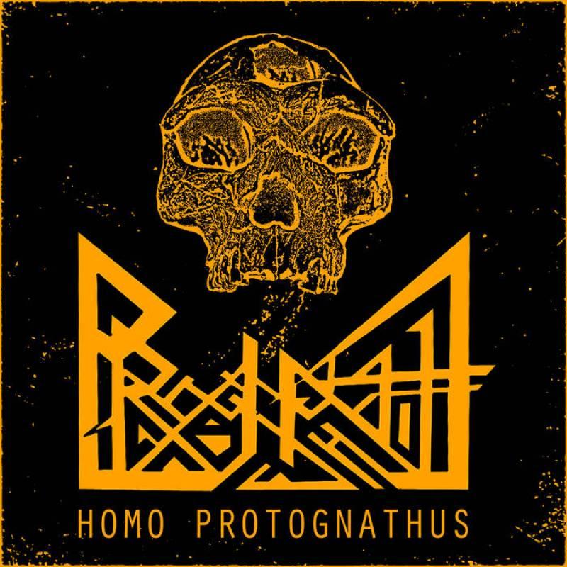 chronique Prognathe - Homo Protognathus