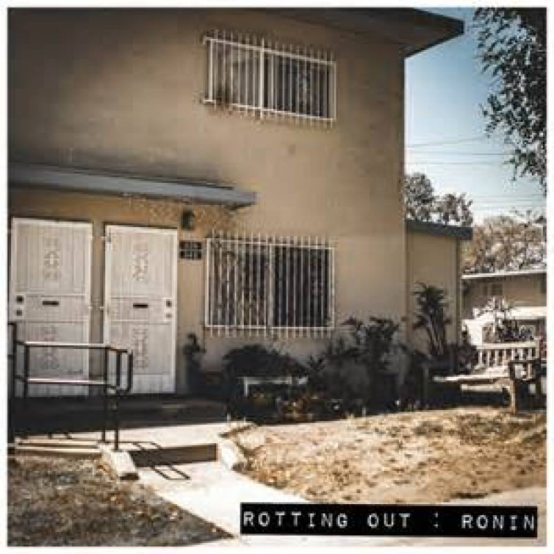 chronique Rotting Out - Ronin