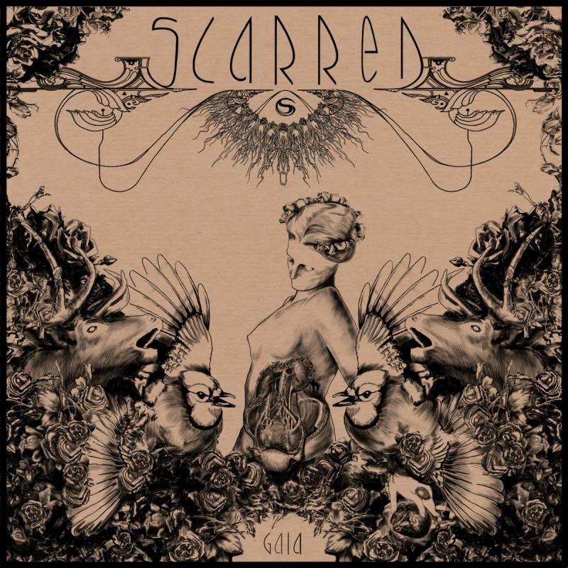 chronique Scarred - Gaia Medea