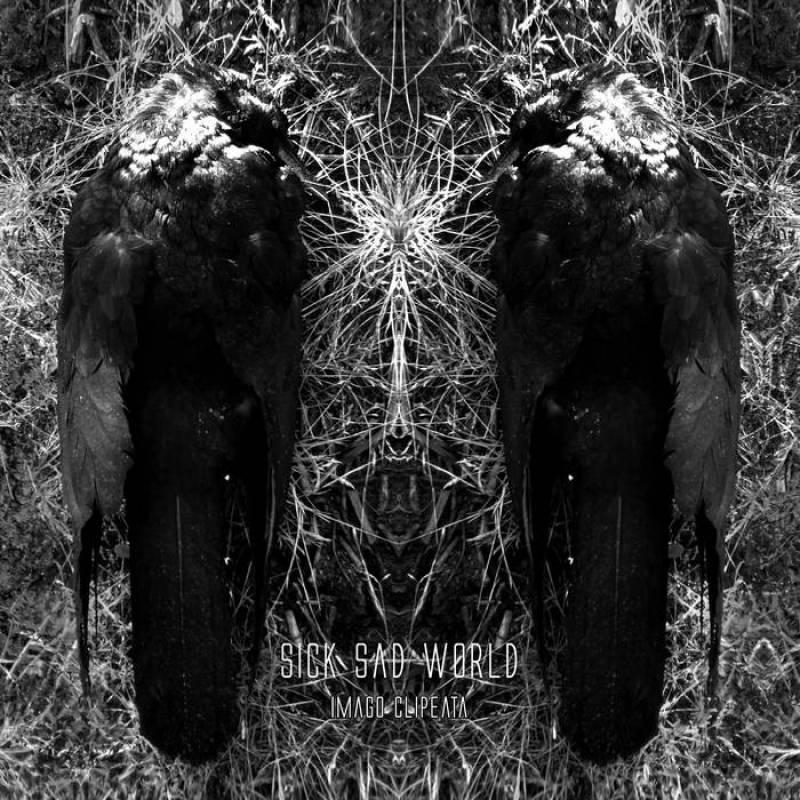 chronique Sick Sad World - Imago clipeata