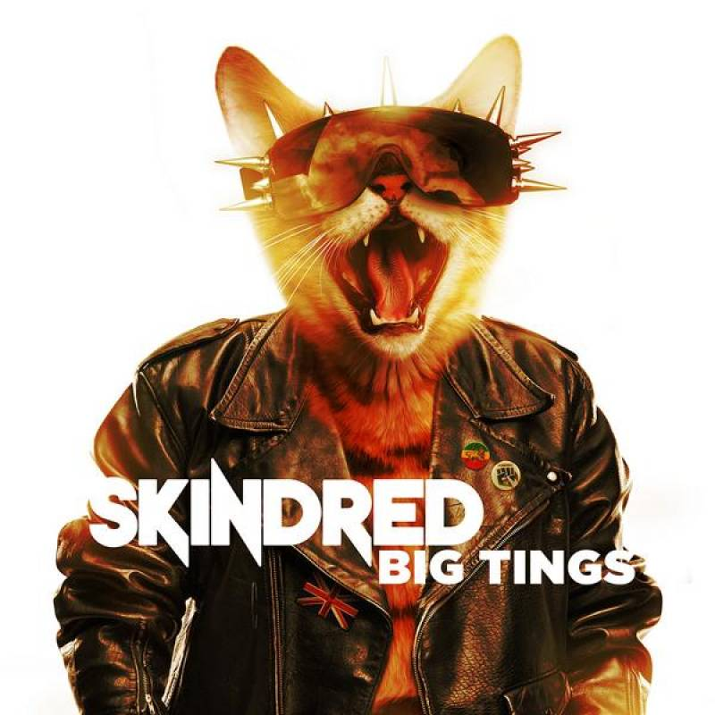 chronique Skindred - Big Tings