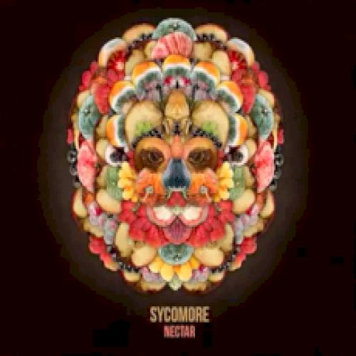 Sycomore - Nectar (chronique)