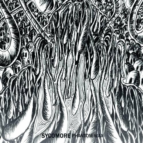 chronique Sycomore - Phantom wax