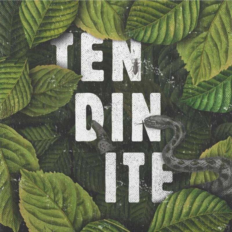 chronique Tendinite - S/T
