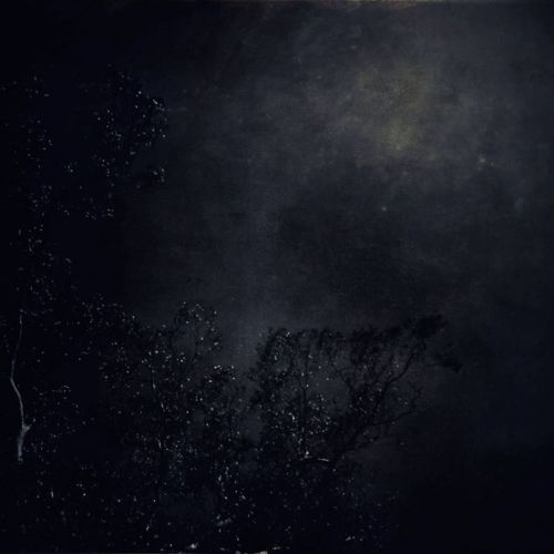 chronique Terra - Untitled
